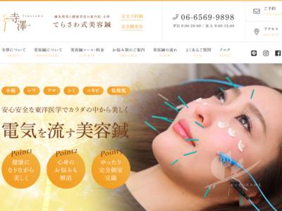 写真:鍼灸整骨と美容の複合院 寺澤様 美容鍼専門サイト制作しました!