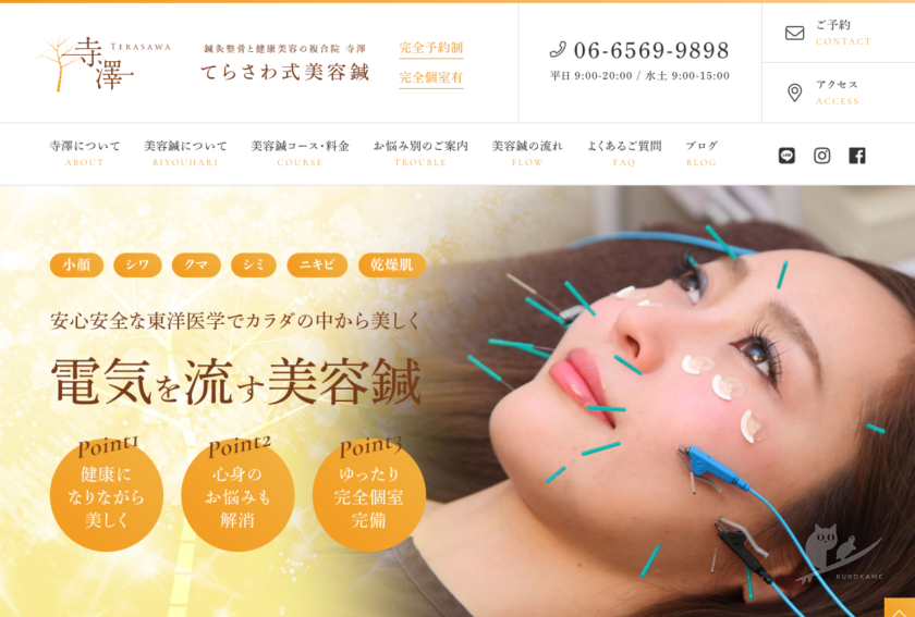 大阪・住之江「鍼灸整骨と健康美容の複合院 寺澤」美容鍼専門サイト