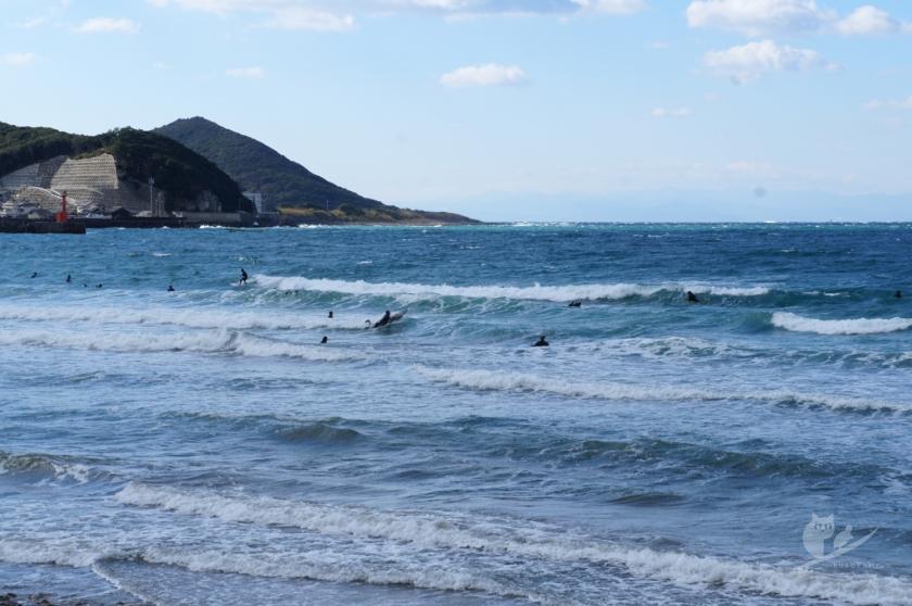 和歌山某所の波