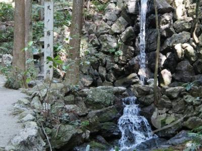 写真:4月1日 天の岩戸(恵利原の水穴)岩戸桜と宮川堤&おまけ