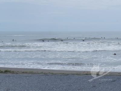 写真:4月29日 爆風吹き荒れ流されパクチーで湯あたりの千葉北