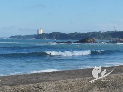 写真:9月5日 伊勢 台風10号でひざから頭半?人生一デカ波に巻かれる嫁