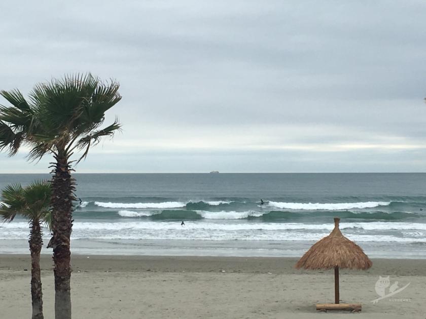 磯ノ浦サーフポイントの波