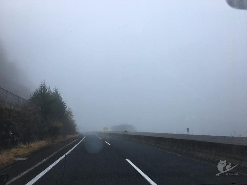 霧の舞鶴道