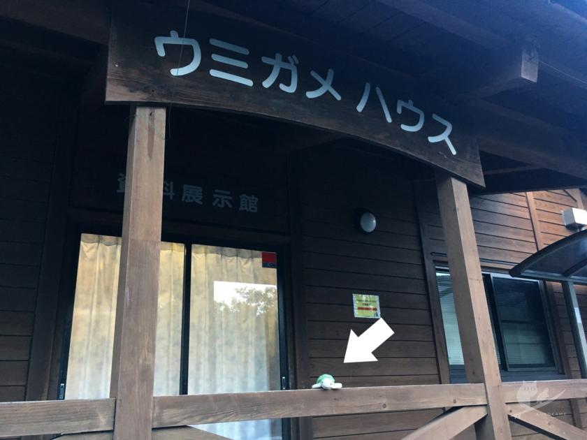 三重の道の駅紀宝町ウミガメ公園