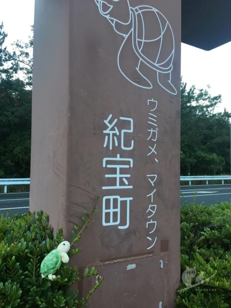 ウミガメ、マイフレンド。三重の道の駅紀宝町ウミガメ公園