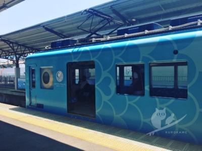 写真:8月1日 磯ノ浦 小波と割り切って電車でこんがりビキニサーフィン