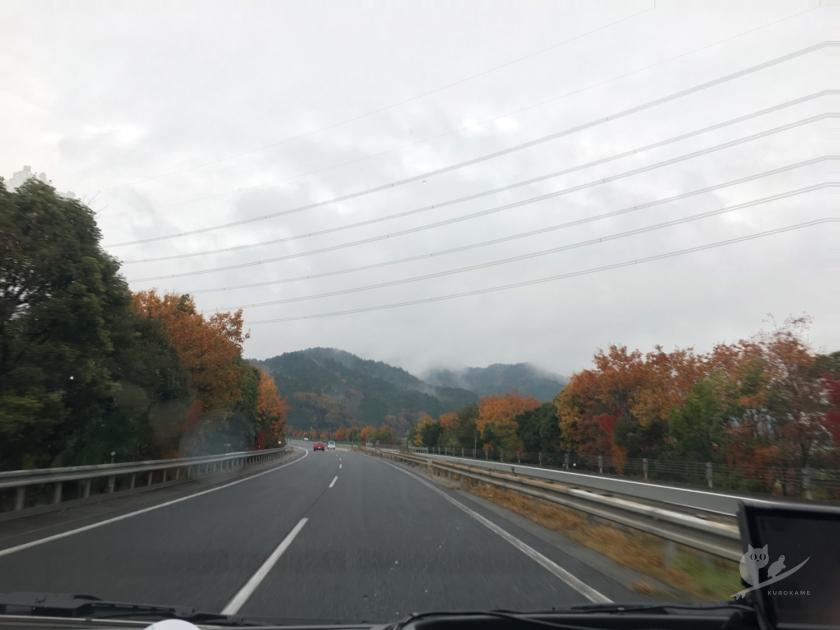 丹後サーフトリップへ行く途中の高速の紅葉