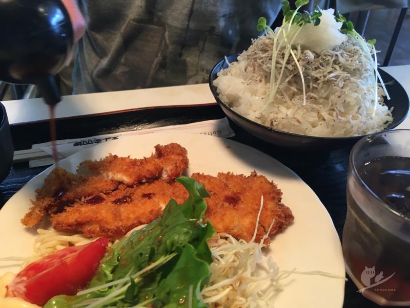 伊良湖・ホット赤羽根のしらす丼&チキンカツ