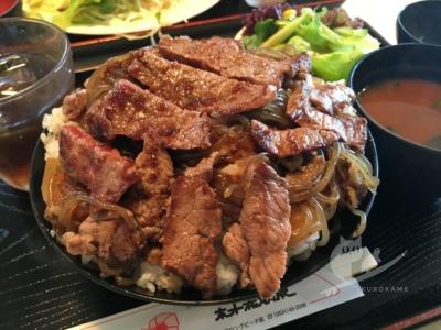 写真:8月13日 伊良湖 GOOD WAVEと激旨ステーキ丼と離岸流