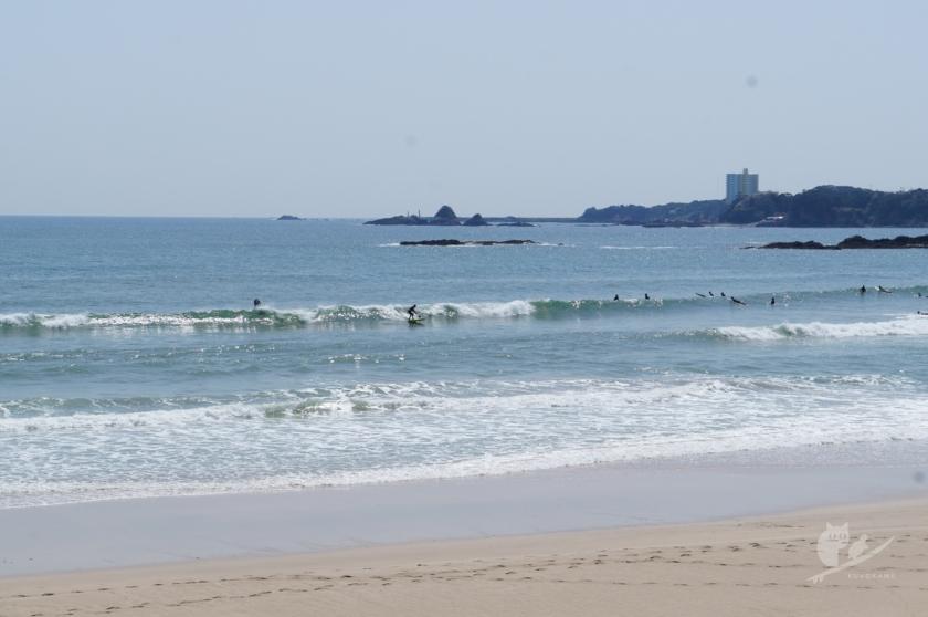 伊勢・市後浜サーフポイントの波