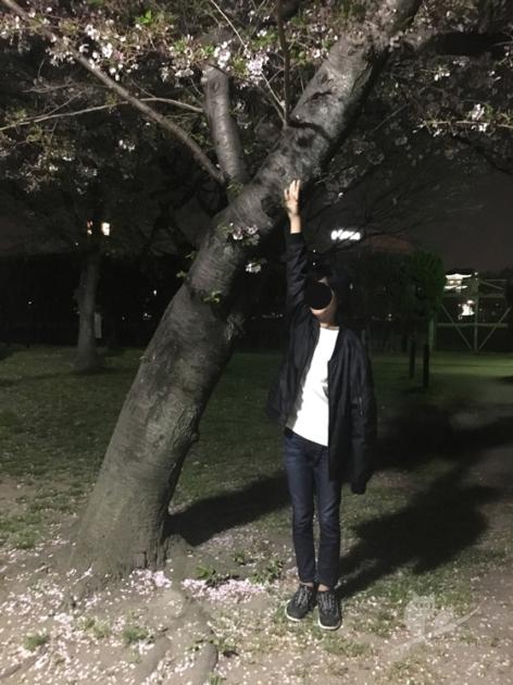 大阪・住吉公園で夜桜見物