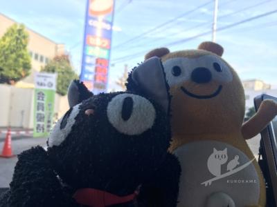 写真:11月17日 鳥取 爆風チョッピーでテンション下がり蟹買って自由、夜