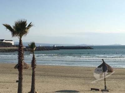 写真:2月某日 磯ノ浦 1ヶ月半ぶり!低気圧のち晴れのぽかぽかサーフィン