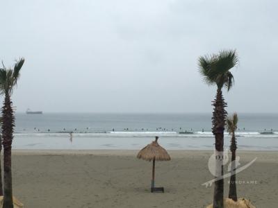 写真:4月10日 磯ノ浦 一日早かった!もっと上がると思ってた超小波のイソコ
