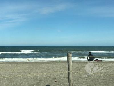 写真:4月28日 波友と合流!強風吹き荒れ押すな押すなの千葉・一宮