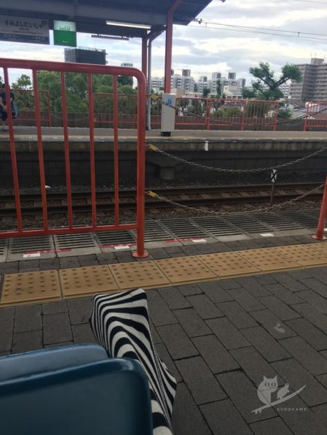 くろかめ磯ノ浦へ電車サーフィンに出発