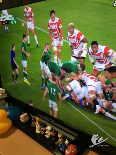 ラグビーワールドカップ2019日本対アイルランド