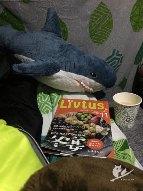 IKEAのサメと車中泊