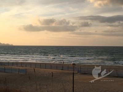 写真:12月18日 丹後 ドキッ!浪花の女ひとりのサーフィン大会