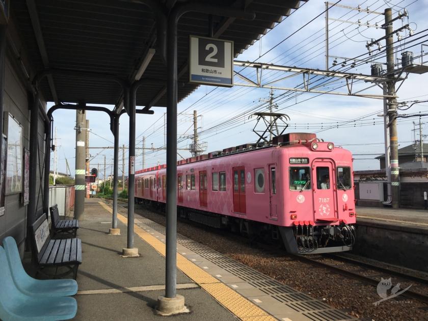 南海加太線磯ノ浦駅とめでたいでんしゃ